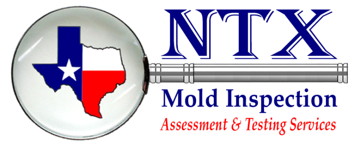 Mold Inspection, Assessment and Testing